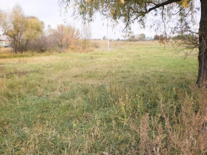 участок 25 сот., Черкасские Тишки, Харьковская область (106269 11)