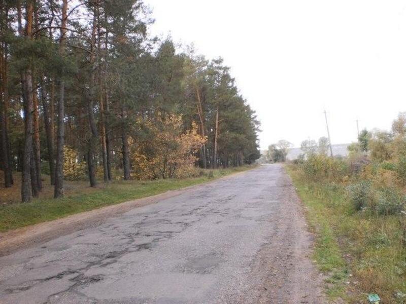 участок 25 сот., Черкасские Тишки, Харьковская область (106269 7)