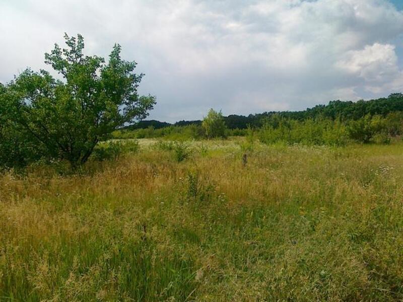 Участок, Гусиная поляна, Змиевской район