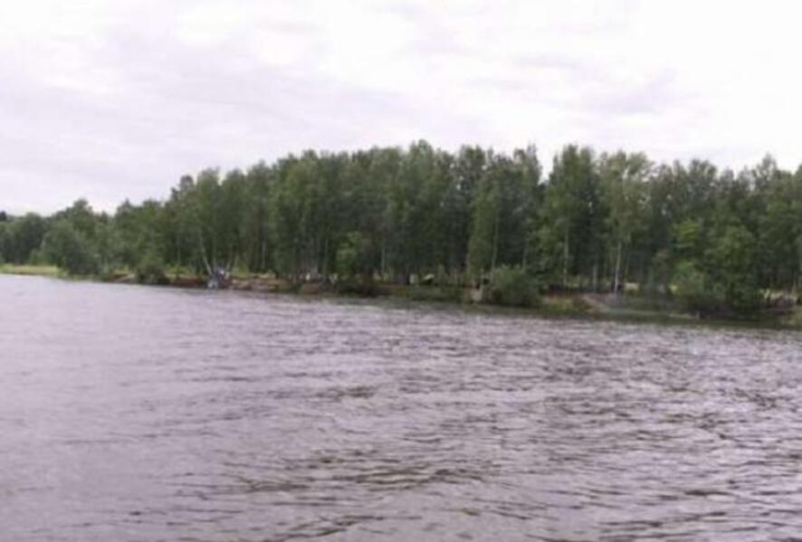участок 12 сот., Малая Даниловка, Харьковская область (205075 1)
