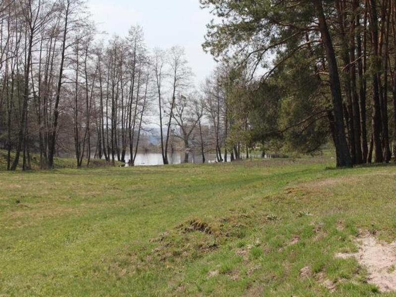 участок 25 сот., Тимченки, Харьковская область (223528 1)