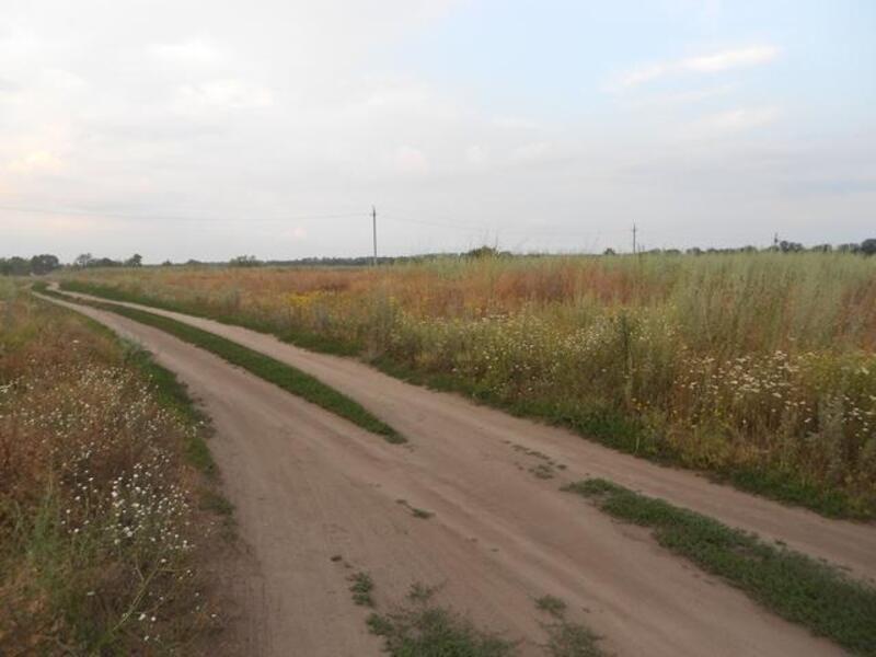 Участок, Безруки, Дергачевский район, Молочная (Кирова)