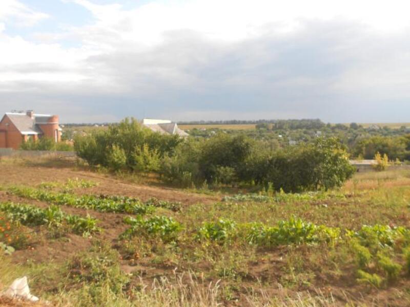 участок, Харьковская область, Черкасские Тишки, Липецкое направление (241718 4)
