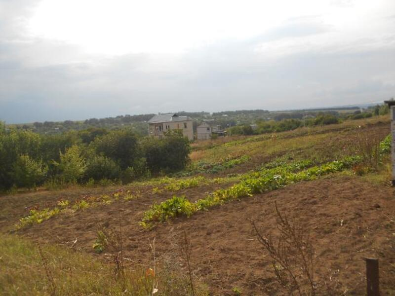 участок, Харьковская область, Черкасские Тишки, Липецкое направление (241718 6)