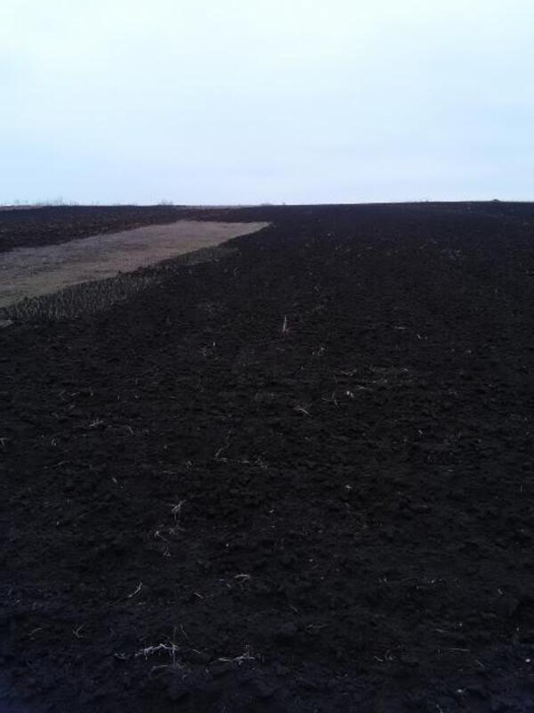участок 10 сот., Дергачи, Харьковская область (295318 7)