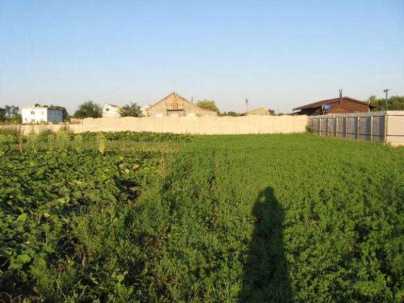 участок 12 сот., Черкасская Лозовая, Харьковская область (306181 1)