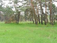участок, Харьковская область, Дергачевский район, Малая Даниловка, Дергачевское направление (331360 4)
