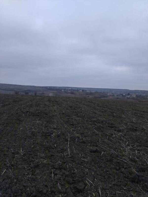 участок 12 сот., Черкасская Лозовая, Харьковская область (384366 1)