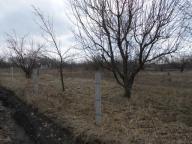 участок 10 сот., Каменная Яруга, Харьковская область (384865 2)