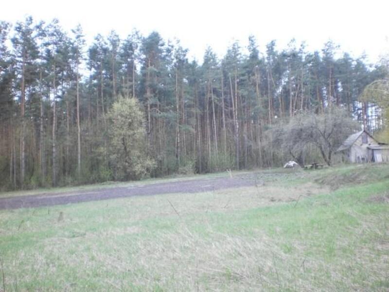 участок 25 сот., Хотомля, Харьковская область (393997 1)