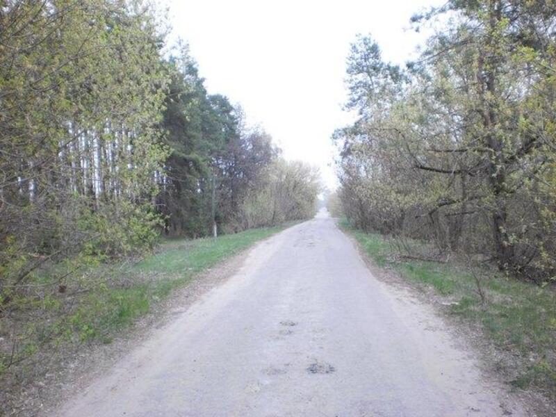 участок 25 сот., Хотомля, Харьковская область (393997 3)