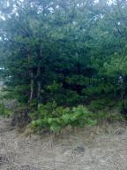 участок 15 сот., Коротыч, Харьковская область (399941 1)