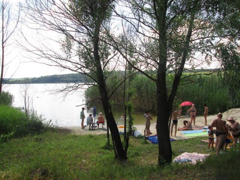 участок 25 сот., Березовка, Харьковская область (405550 2)