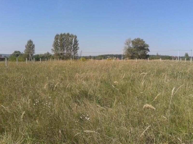 участок 30 сот., Березовка, Харьковская область (416523 1)