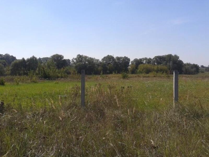участок 30 сот., Березовка, Харьковская область (416523 4)