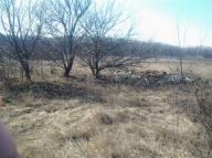 Купить земельный участок в Харькове (442510 3)