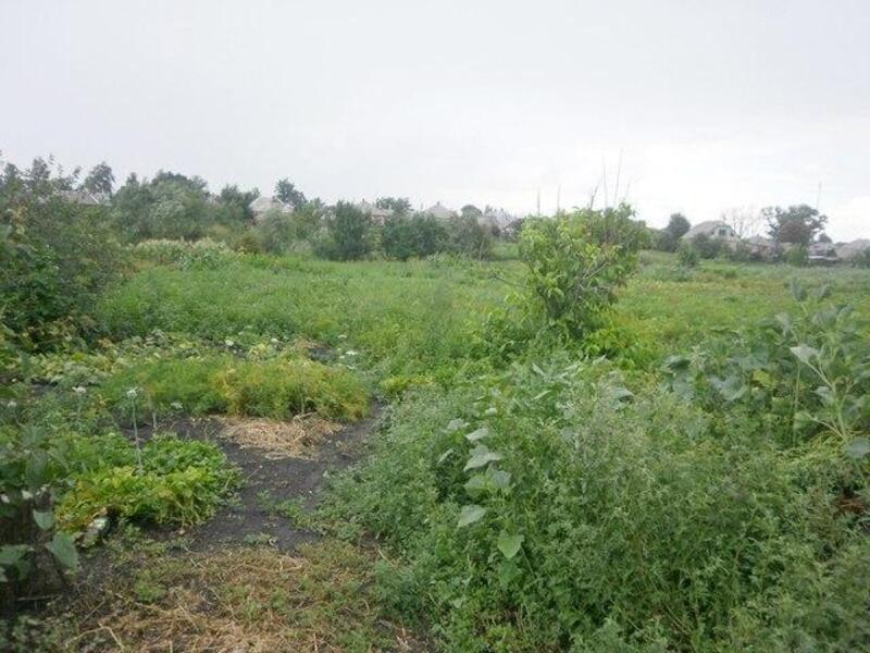 участок 12 сот., Дергачи, Харьковская область (447206 1)