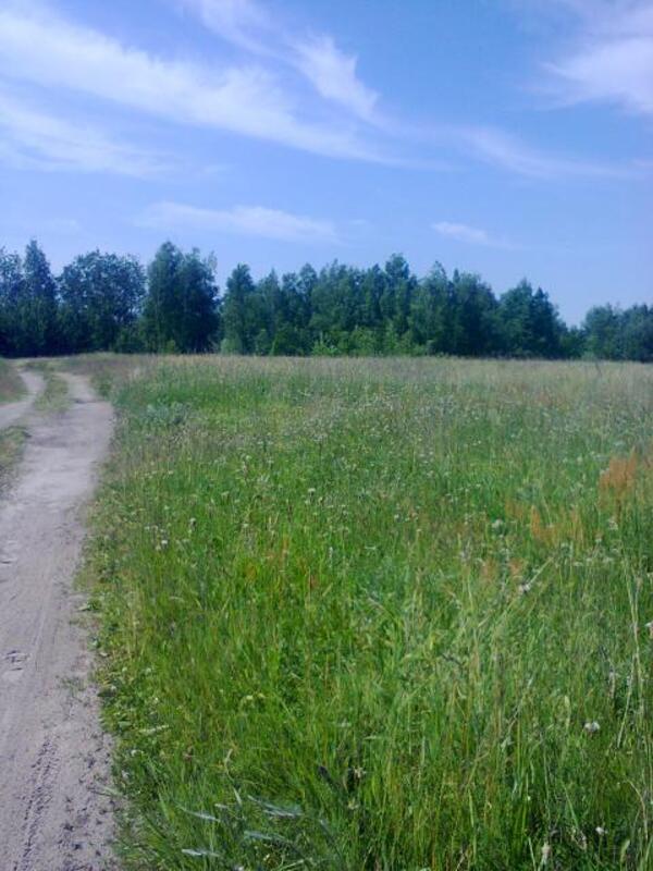 участок 15 сот., Хорошево, Харьковская область (448745 2)
