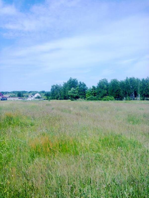 участок, Харьковская область, Харьковский район, Коротыч, Люботинское направление (448745 3)