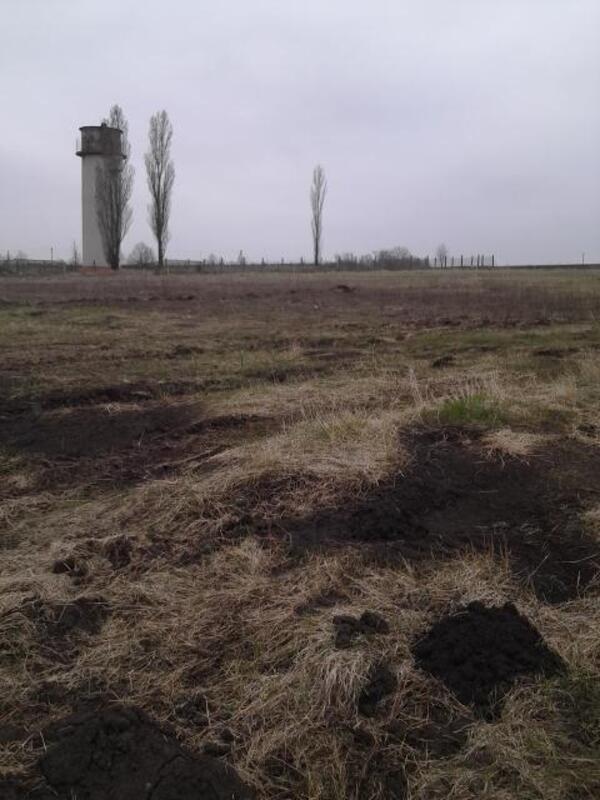 участок 10 сот., Малая Даниловка, Харьковская область (452072 1)