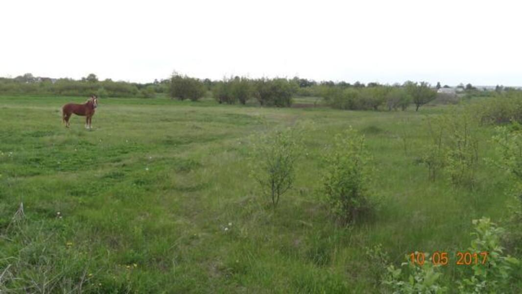 участок, Харьковская область, Харьковский район, Лизогубовка, Змиевское направление (457309 3)