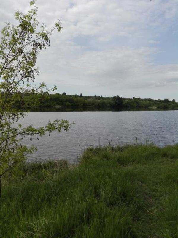 участок 15 сот., Родичи, Харьковская область (460111 2)