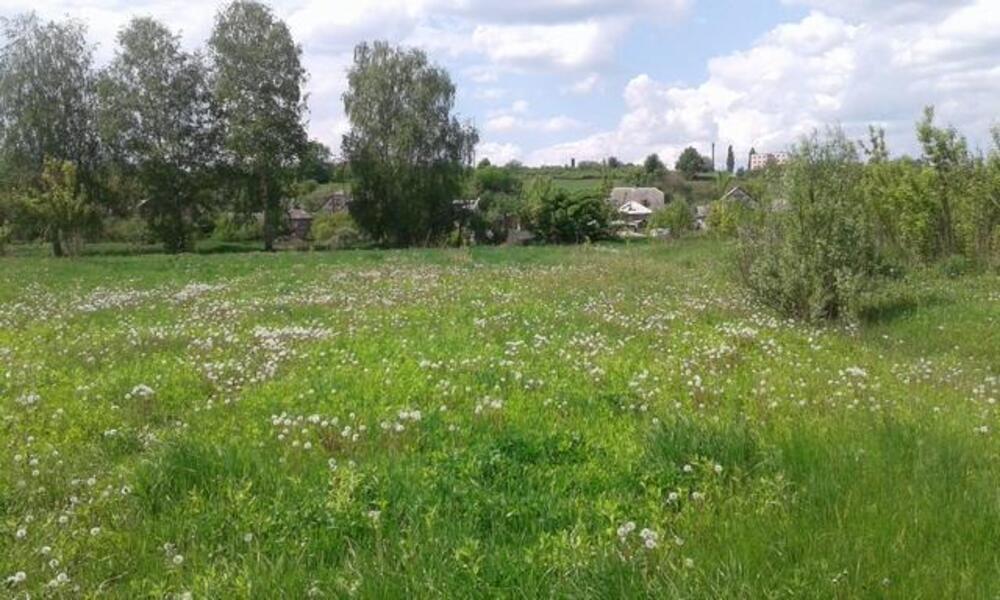 участок 12 сот., Безруки, Харьковская область (47438 1)