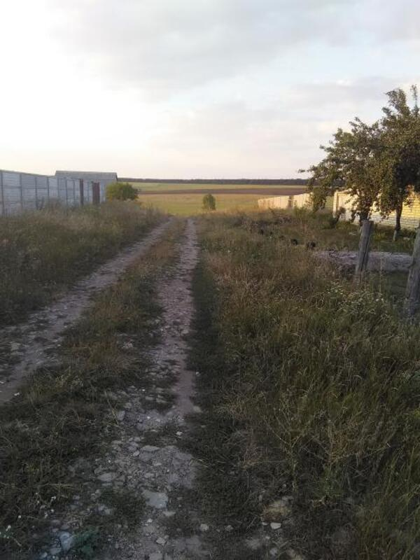 участок, Харьковская область, Дергачевский район, Шелкоплясы, Дергачевское направление (474666 4)