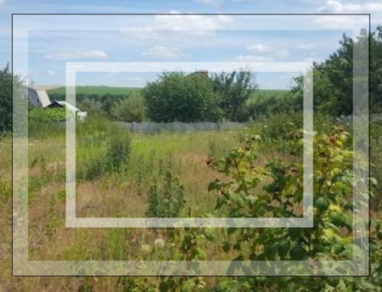 участок 25 сот., Русские Тишки, Харьковская область (507900 6)
