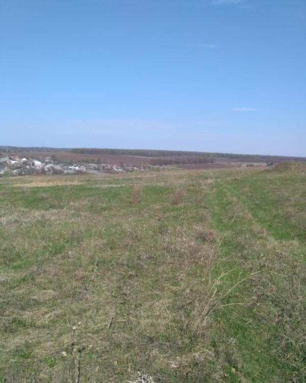 участок 14 сот., Харьков, Большая Даниловка (515353 1)
