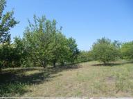 Купить земельный участок в Харькове (535330 1)