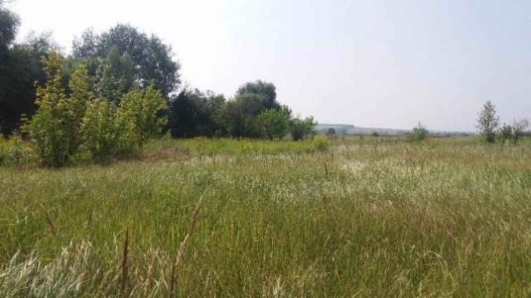 Участок, Русские Тишки, Харьковский район