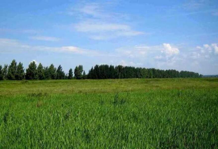 участок 15 сот., Новая Водолага, Харьковская область (537833 1)