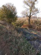 Купить земельный участок в Харькове (549567 1)