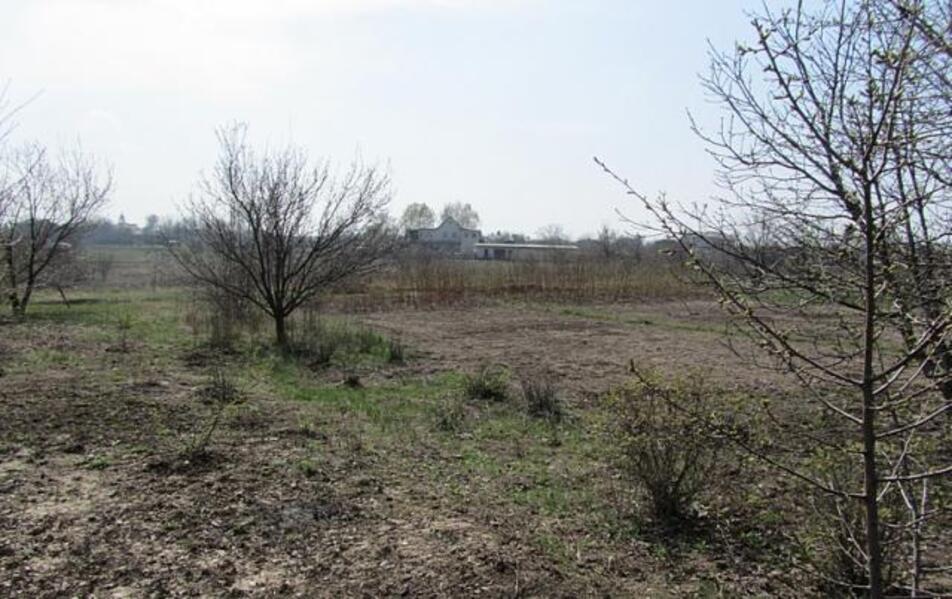 участок 15 сот., Слатино, Харьковская область (56131 2)