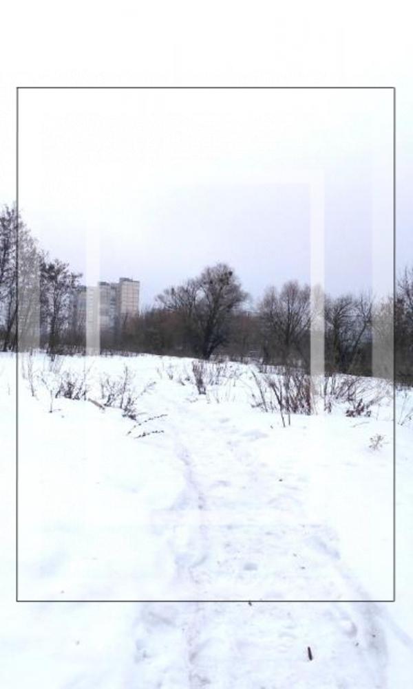 участок 15 сот., Флоринка, Харьковская область (572623 1)