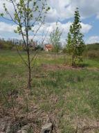 Купить земельный участок в Харькове (595347 1)