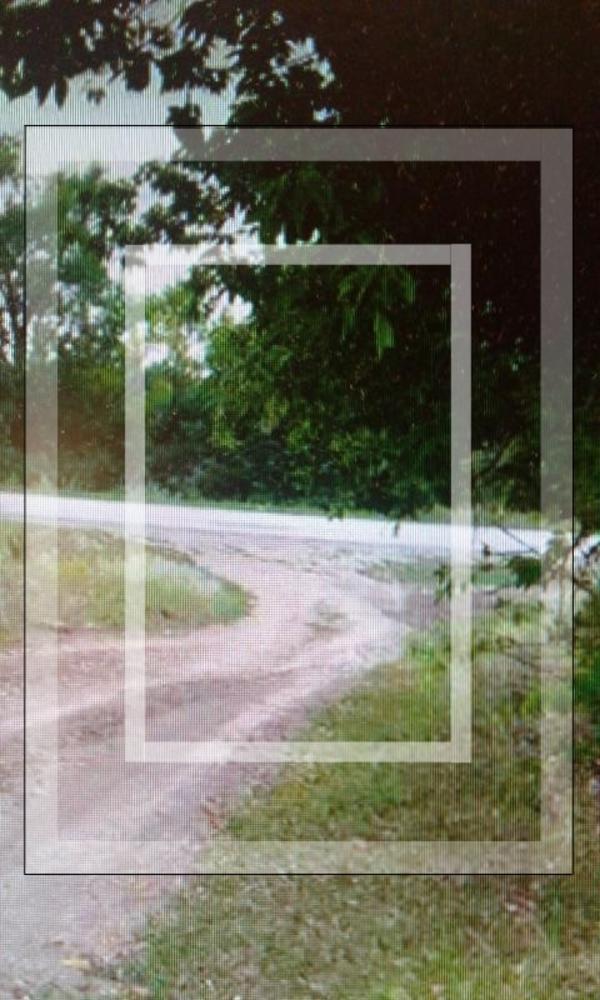 Участок, Питомник, Дергачевский район, Лесная (Красноармейская, Косиора, Кирова, Котовского)