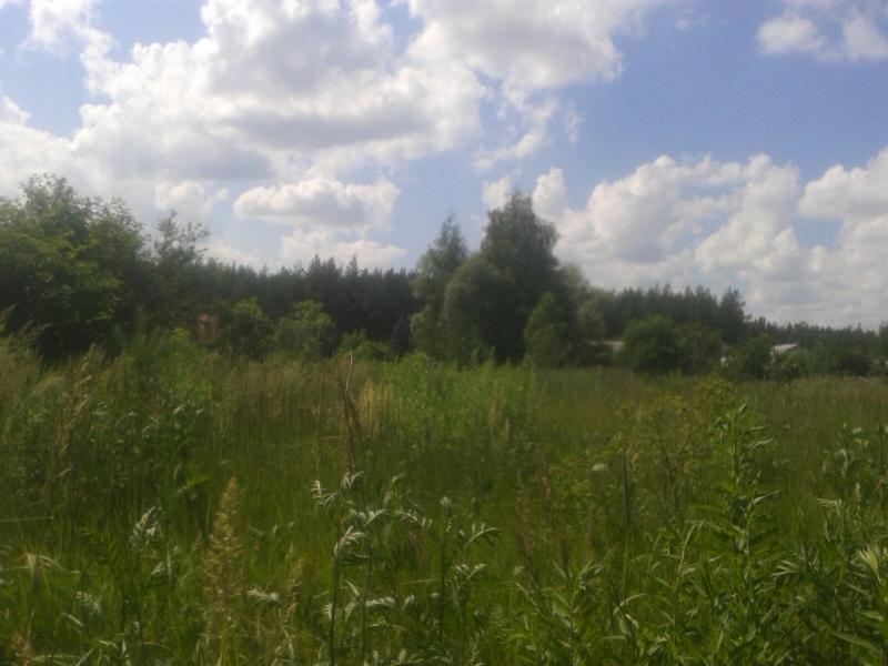 Участок, Борщевая, Харьковский район, Зеленая (Артема, Колхозная)