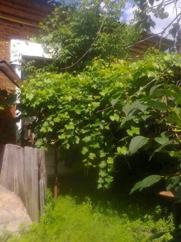 Фото 3 - Продажа квартиры 2 комн в Харьковcкой области