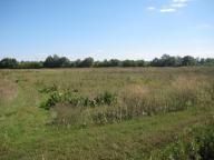 Купить земельный участок в Харькове (104075 1)