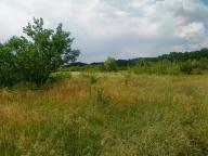 Купить земельный участок в Харькове (115608 1)