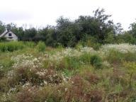Купить земельный участок в Харькове (285914 1)