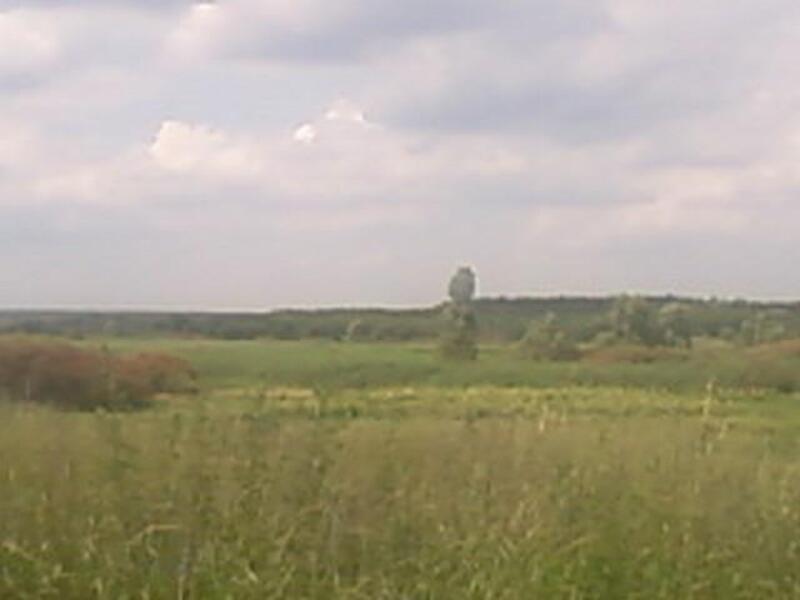 участок, Харьковская область, Змиевской район, Черкасский Бышкин, Змиевское направление (318287 1)