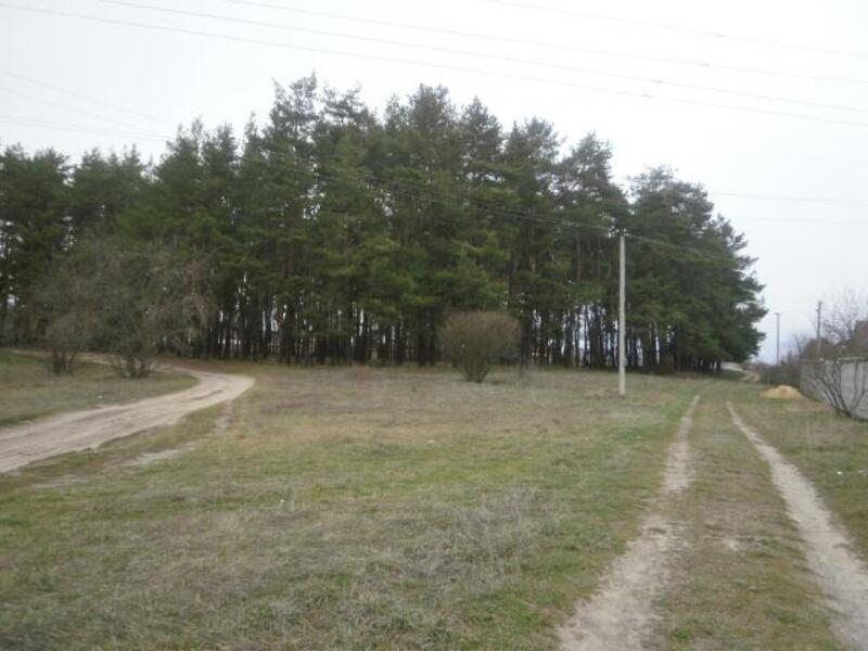 участок, Харьковская область, Дергачевский район, Лужок, Дергачевское направление (339447 3)