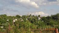Купить земельный участок в Харькове (388758 1)