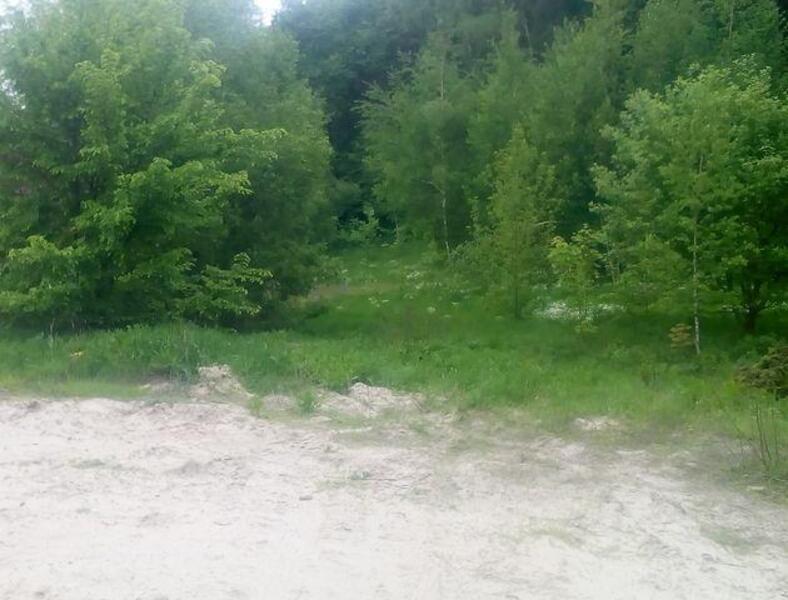 участок, Харьковская область, Змиевской район, Коропово, Змиевское направление (397192 1)