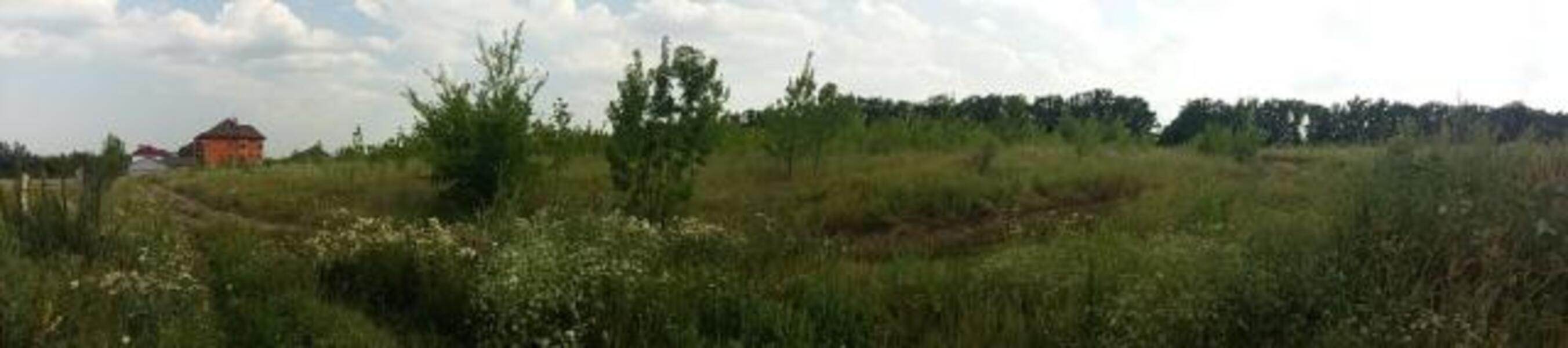 участок, Харьковская область, Дергачевский район, Лужок, Дергачевское направление (432381 1)