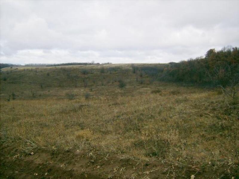 участок, Харьковская область, Нововодолажский район, Ракитное, Мерефянское направление (97935 2)