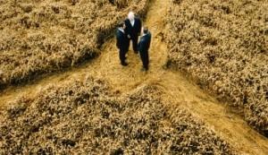 Житель Харькова незаконно завладел землей на 14,5 млн. гривен (zemlya 300x173)